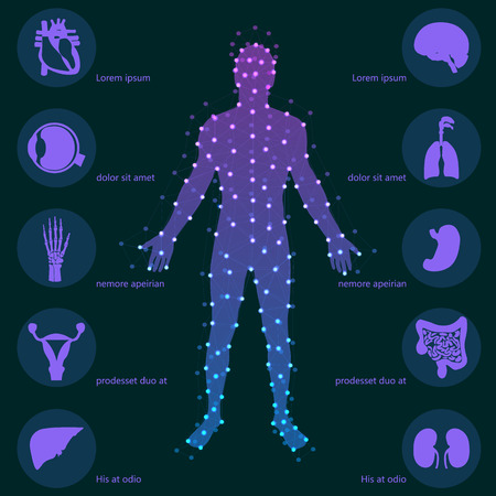Medical background. Human anatomy. Illustration