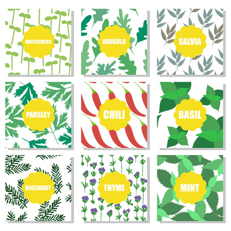 Set of hand drawn patterns Vector