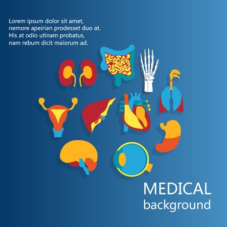 의료 배경의 개념입니다. 인간의 해부학, 인간의 장기의 거 대 한 컬렉션에 대 한 평면 디자인 아이콘.