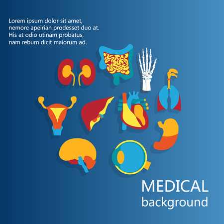 Concept of medical background. Flat design icons for human anatomy, huge collection of human organs.