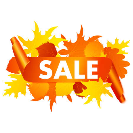 Autumn sale banner isolated on white background. Vector orange curved banner with autumn leaves. Vectores