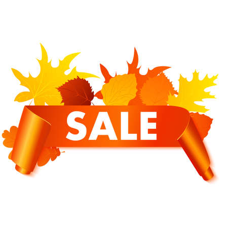 background banner: Autumn sale banner isolated on white background. Vector orange curved banner with autumn leaves. Illustration
