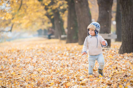 Beautiful baby boy walking throw the autumn leaves at the park.
