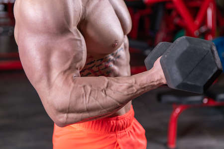 Close up of powerful muscular man doing biceps exercise with dumbbell at the gym