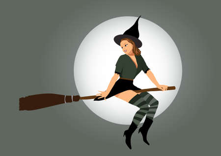 sexy witch flying on broom Stock Vector - 18241209