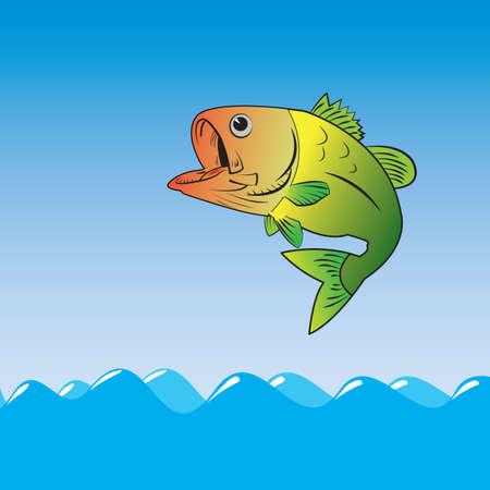 salmon leaping: fish marine ocean food nature