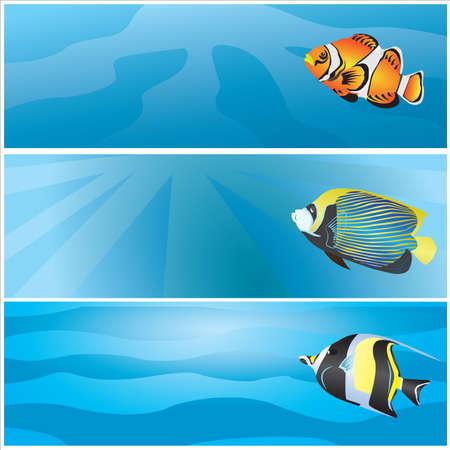 bunter fisch: Meeres Banner mit bunten Fischen Illustration