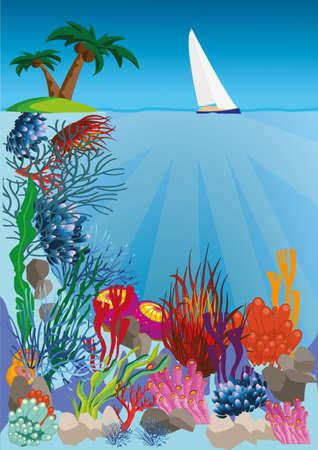bunter fisch: Leben im Meer mit bunten Fischen
