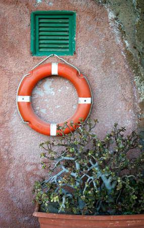 emergency vest: lifeguard