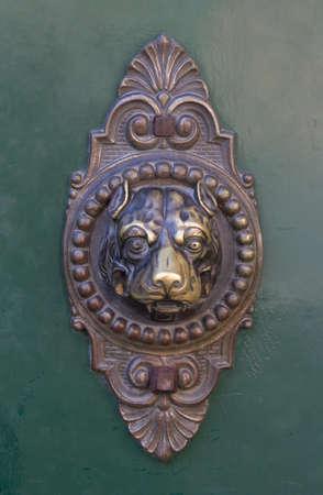 개 문 두 들기 스톡 콘텐츠