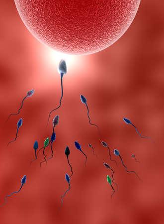 menselijke sperma Stockfoto