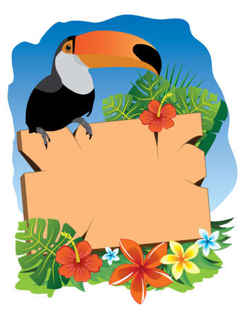 tucan: tucan and sgnboard