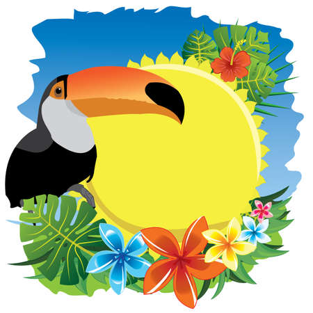 toucan and sun
