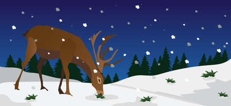christmas night: xmas scene with reindeer