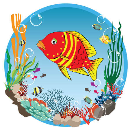 fishbowl: underwater life