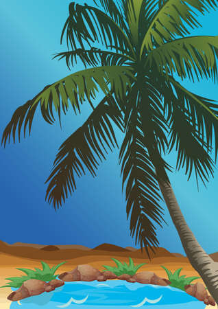 oasis in the desert with palm
