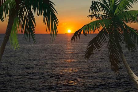 puesta de sol mar sol e ilustración palma Foto de archivo