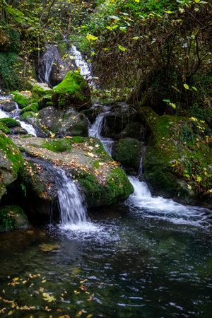 wonderful waterfalls of the cypress forest of fontegreca