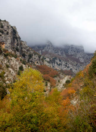 autumn forest and mountains in the fog in bad weather in prata sannita Stock Photo