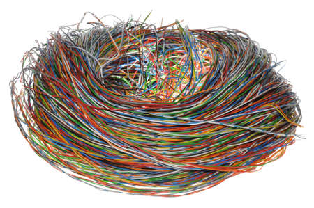 nest web photo