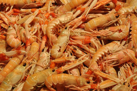 seafruit: Seafruit shrimps fish market in Venice Stock Photo