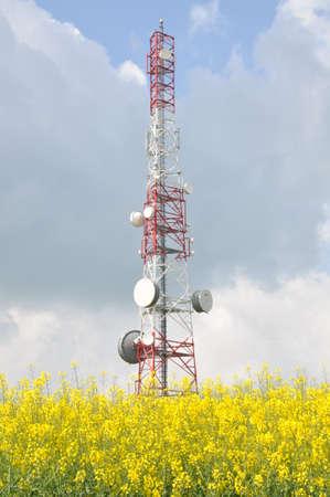 Telecommunication tower on a rape field  photo