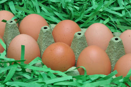 scarp: Eggs in box on green shredded paper as a symbol of Easter Stock Photo