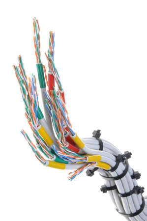 network cables: Computer network cables with cable ties on white background