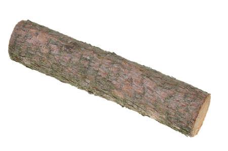 tronco: Registro de madera aislada sobre fondo blanco Foto de archivo