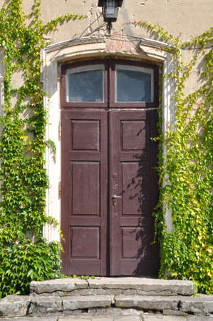 Old wooden door with green ivy