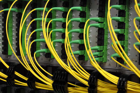 Optical Distribution Frame with Optical Patchcord Cables Close Up