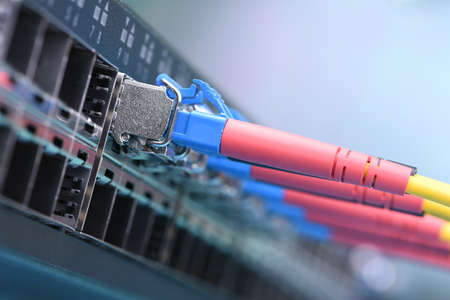 Optical fiber patch cords with gbic connected to the switch, information technology, closeup