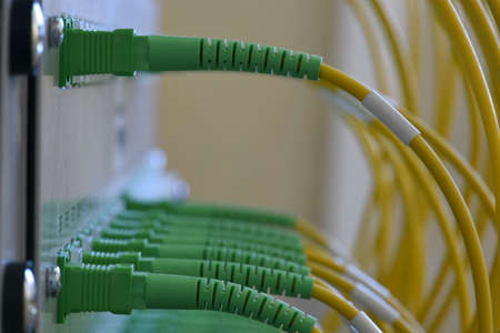 Information technology transfer by passive optical network