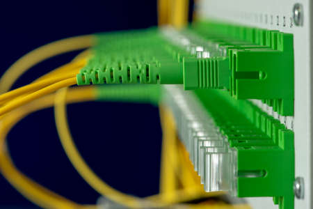 Data center technology with fiber optic distribution panel close-up Reklamní fotografie