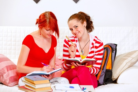 Two pretty girlfriends studying at living room