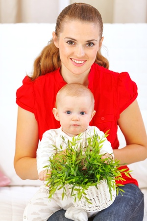 playing on divan: Baby playing with plant while sitting on mothers laps