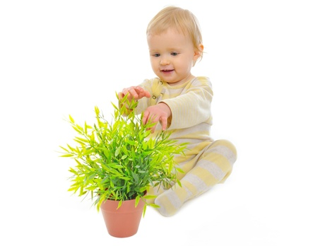 Adorable baby playing with plant in pot isolated on white Stock Photo - 12349551