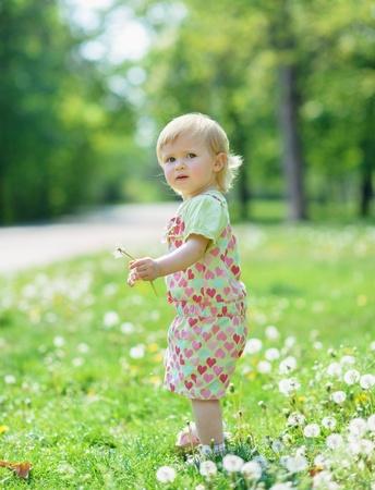 Kid on dandelions field Stock Photo - 13611610