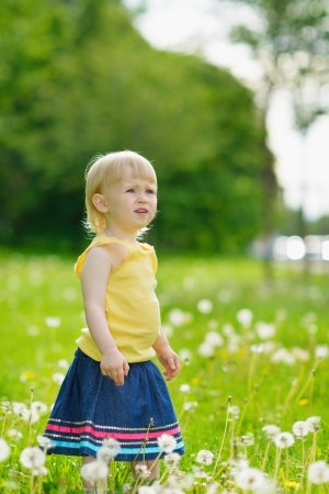 Baby girl on dandelions field looking on copy space photo