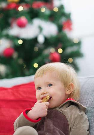Happy baby eating cookie near Christmas tree Stock Photo - 14917649