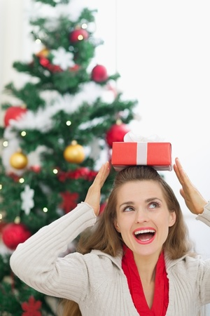 Happy young woman holding Christmas present box on head Stock Photo - 14901638