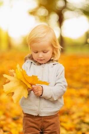 Baby holding fallen leaves photo