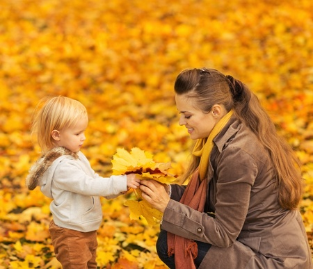 Young mother showing baby fallen leaves Stock Photo - 16030810