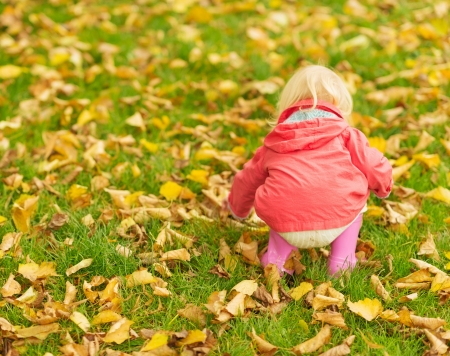Baby collecting fallen leaves. Rear view Stock Photo - 16084854