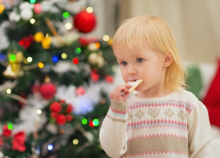 Baby eating Christmas cookies near Christmas tree Stock Photo - 16578003
