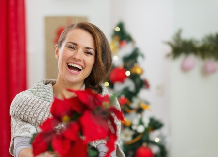 Smiling young woman holding Christmas rose near Christmas tree Stock Photo - 16720086