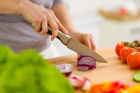 Closeup on woman cutting onion Stock Photo - 19093455