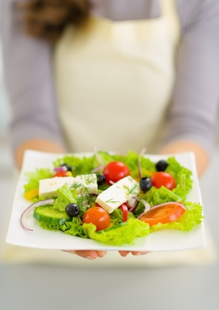 Closeup on woman showing fresh salad Stock Photo - 19093441