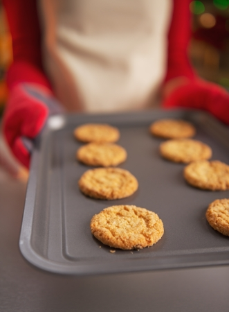Closeup on pan with christmas cookies in hand of young housewife Stock Photo - 23533219