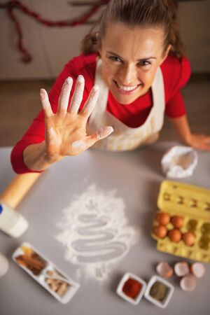 Closeup on happy young housewife showing hand stained in flour Stock Photo - 23533301